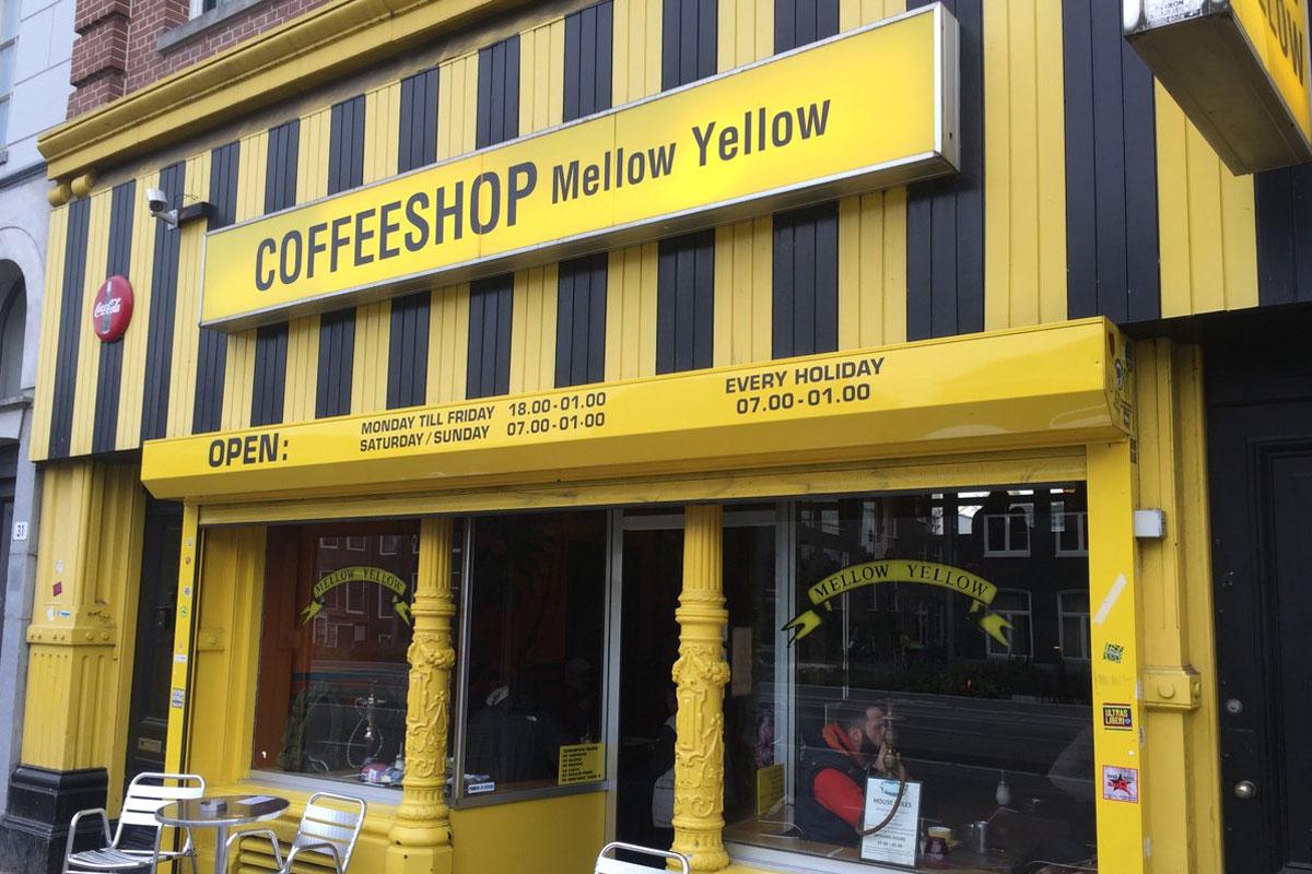 Amsterdam Kahve Dükkanlarının Sonu mu Geliyor?