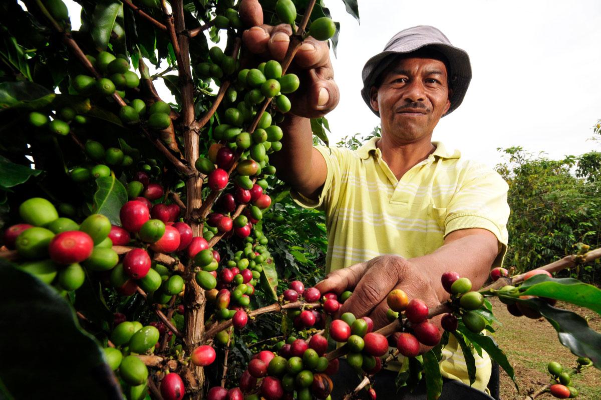 Kolombiya'da Heyelan Bizde Zam