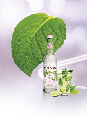 Monin Mojito Mint Şurup 0.7 L