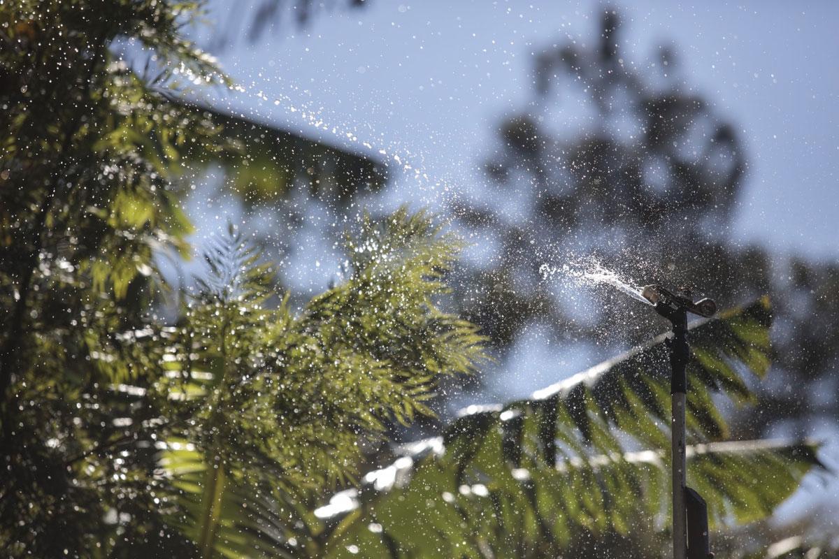 Hıncal Uluç'tan Üretim Süreçlerinde Su ve Kahve Yorumu