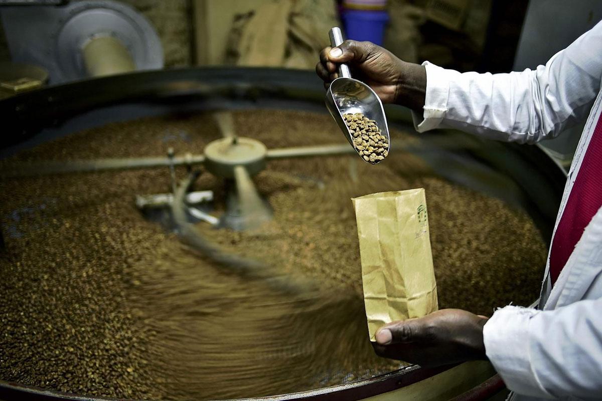 Vietnam ve Hindistan'da Üretim Artarken Endonezya'da Düşecek