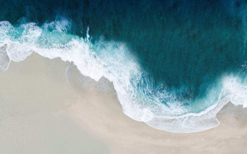 O Valor dos Oceanos