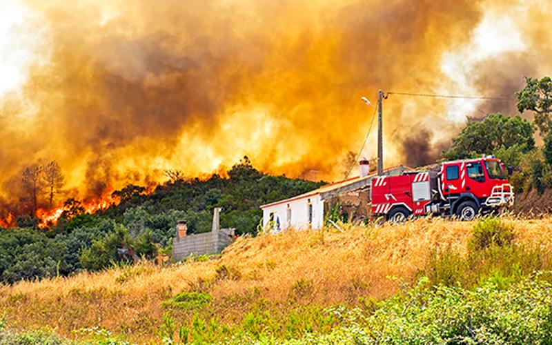 Fundo de Apoio a Incêndios de junho