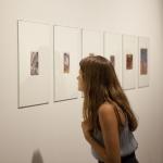 Cruzamento entre as exposições