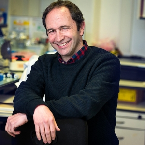 Terapia génica: uma realidade cada vez mais próxima?