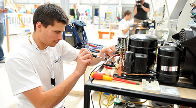SkillFRIDGE_2011