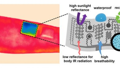 Photo of Scientists develop energy-free personal cooling device