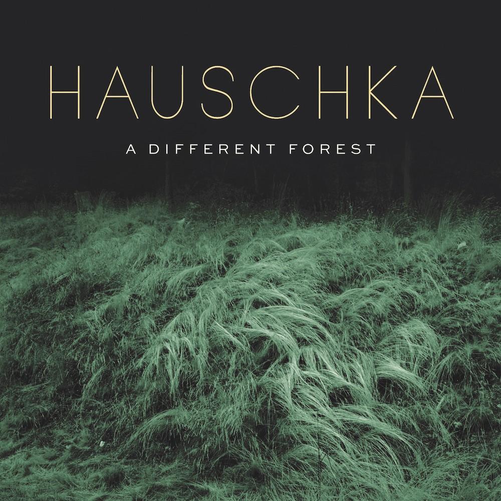 Hauschka – A Different Forest (★★★★): Bezielde eenvoud