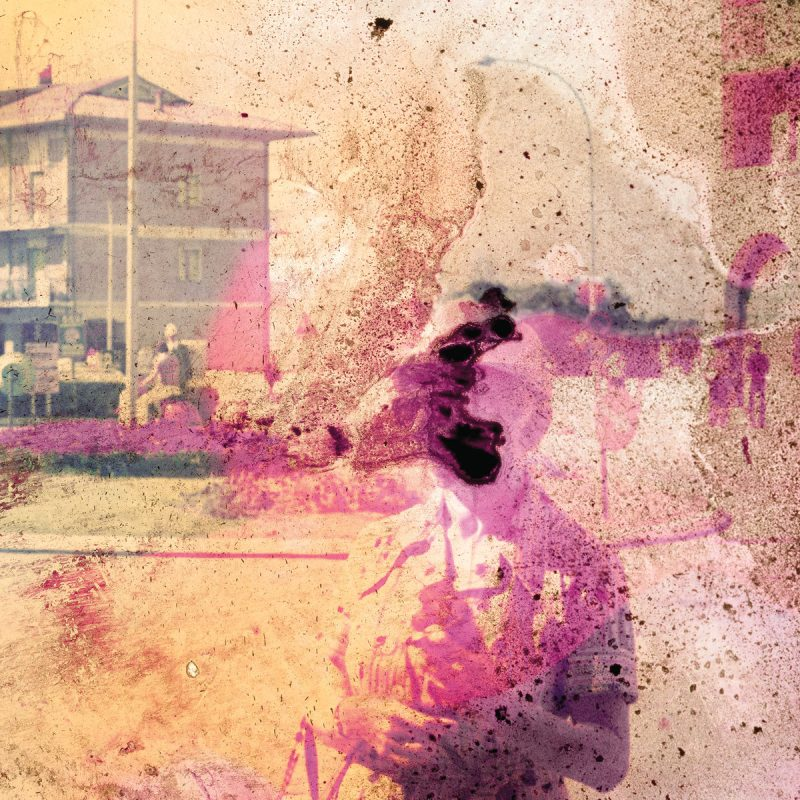 Sunflower – The Spiders We Caught (★★★½): Donkere imperfectie in de  juiste verhouding.