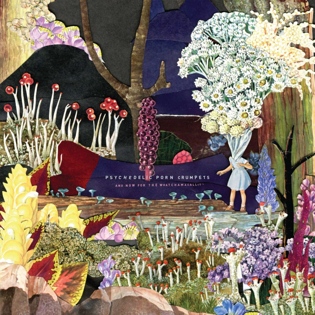 Psychedelic Porn Crumpets – And Now For The Whatchamacallit (★★★★): Psychedelisch wonderland