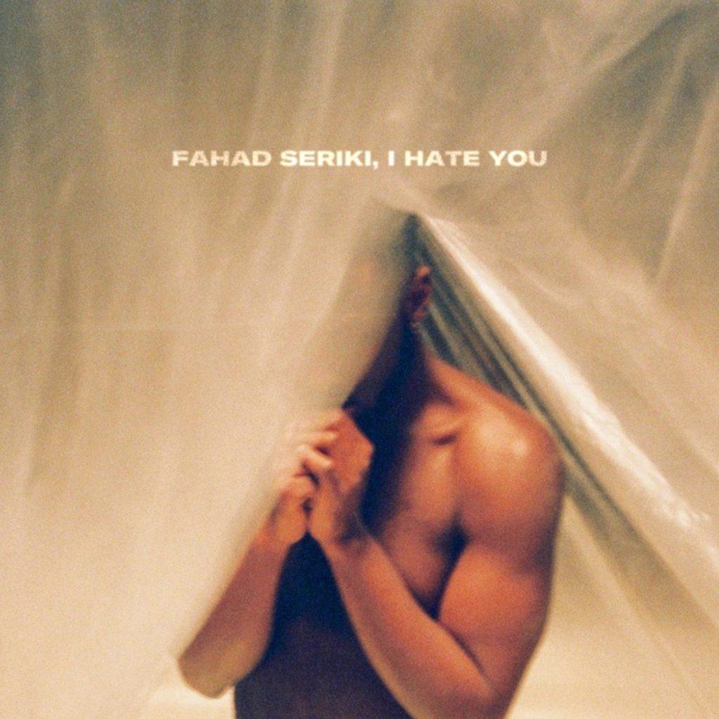 DVTCH NORRIS – Fahad Seriki, I Hate You (★★★★½): Transparante diversiteit