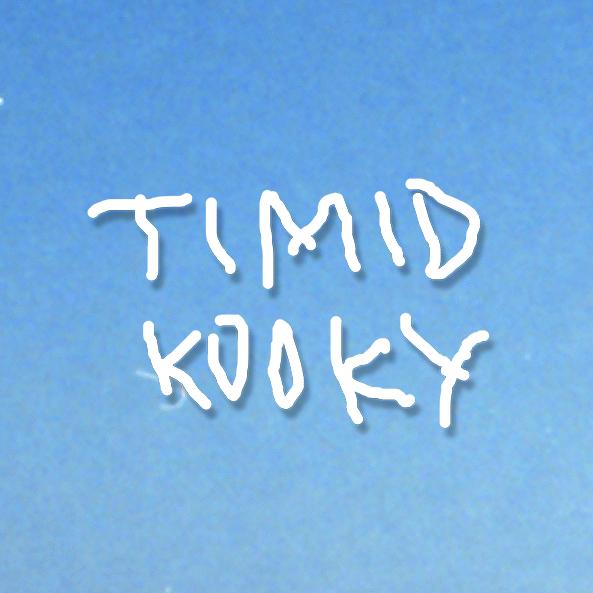 "Nieuwe single Timid Kooky – ""Denise"""