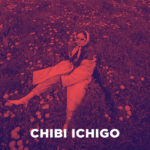Interview Chibi Ichigo: 'Ik typte 'kleine aardbei' in op Google Translate'