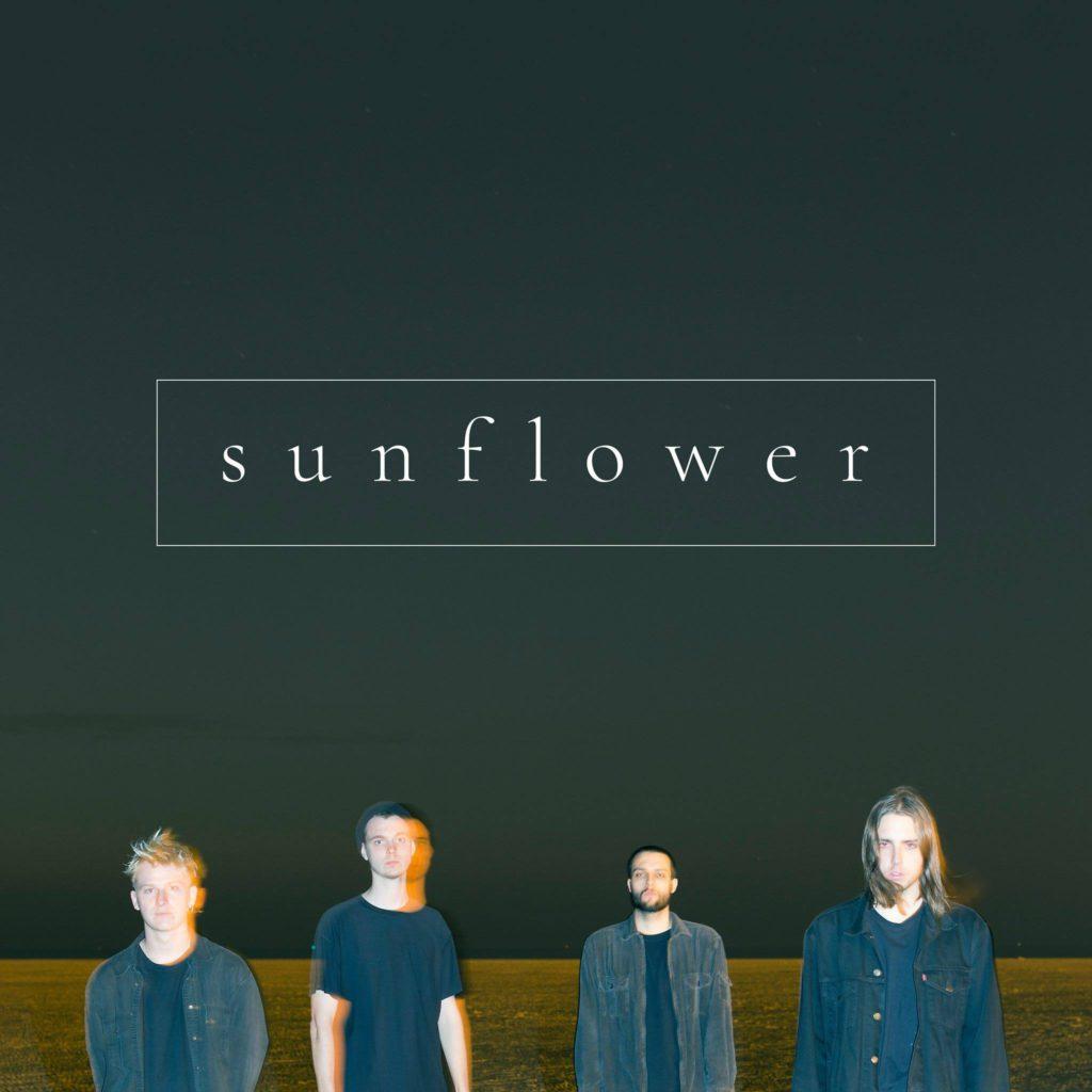"""Vragen van """"Den Beir"""" – Sunflower"""