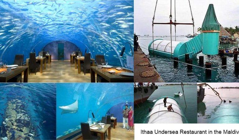 Deniz altında saçınızın teli ıslanmadan yemek yemek İthaa Undersea Restaurant ile mümkün