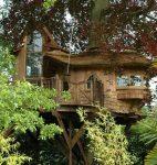 Dünyanın en güzel ağaç evleri... Rüya gibi...