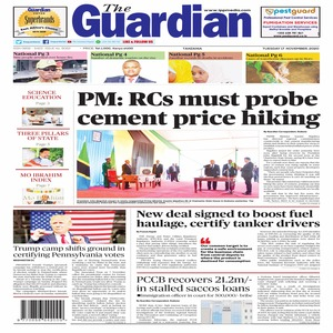The Guardian 17 November 2020