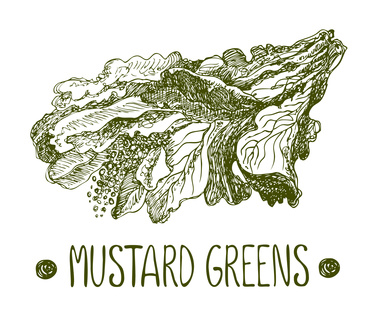 The healing power of plants: mustard seeds