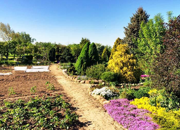 ecohealthlab garden