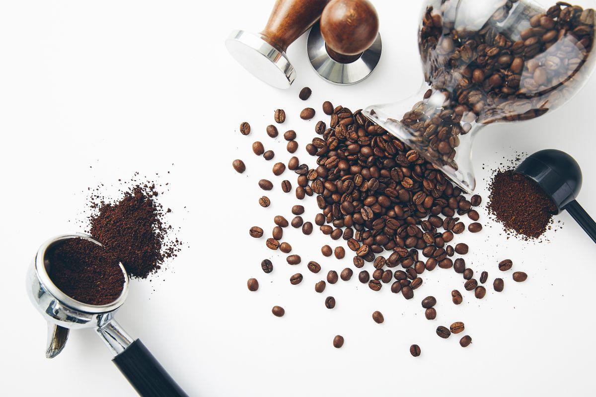 Kahvenin Yolculuğu