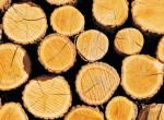 Holzstapel2