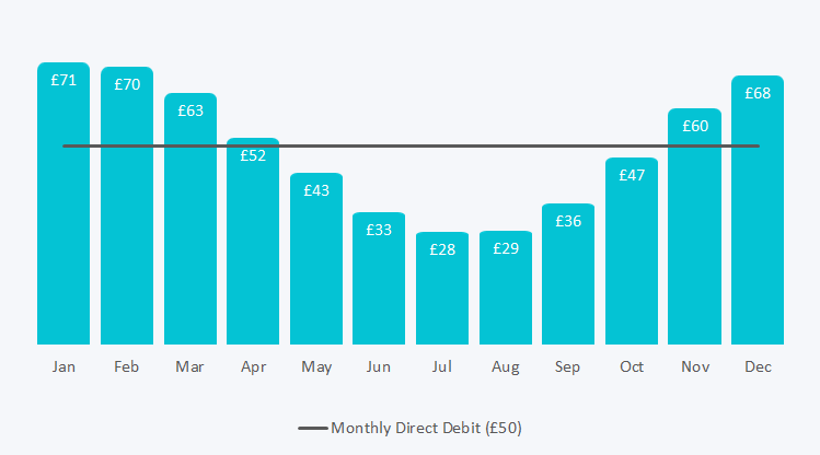A chart showing equal direct debit amount across a year against the actual monthly cost