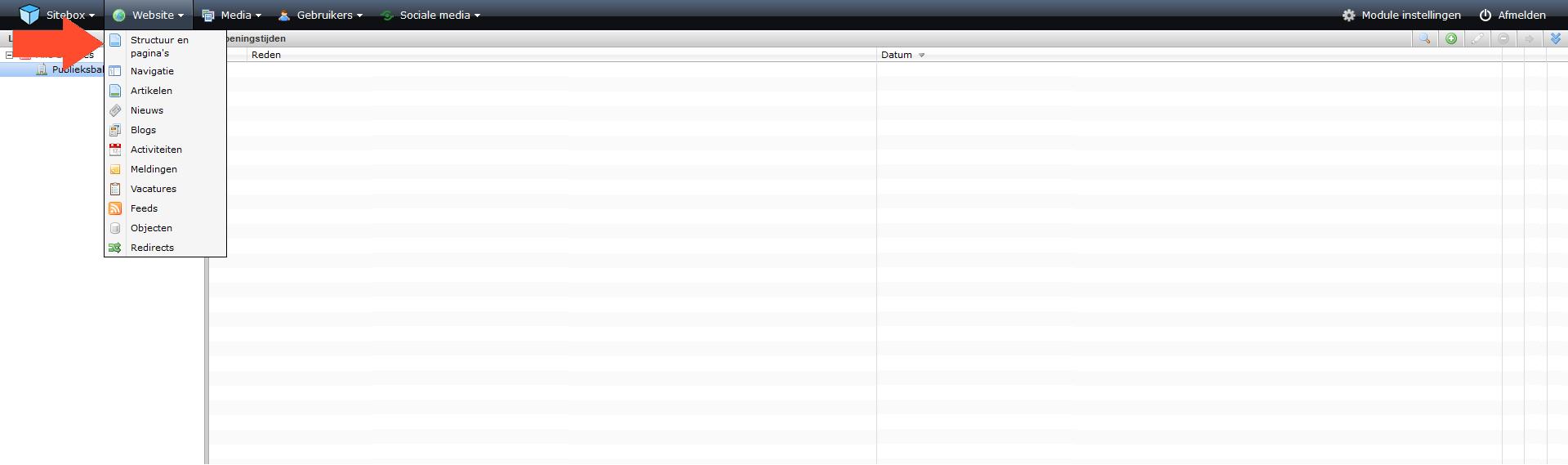 Screenshot van het menu 'Website'. Klik op de afbeelding om deze te vergroten.