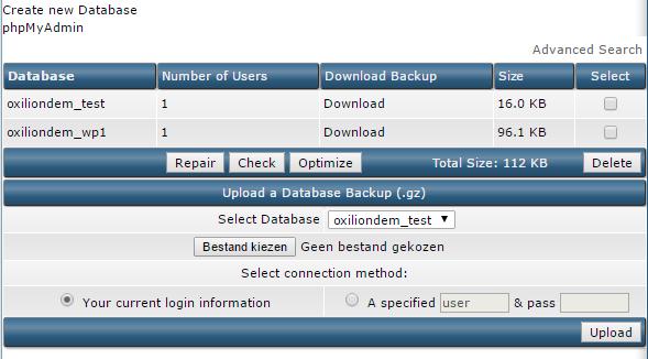 Overzicht van databases binnen DirectAdmin.