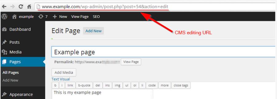 Wordpress_cms_example