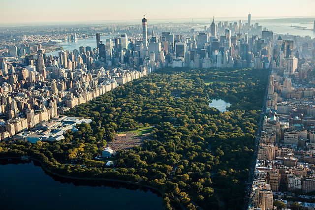 Aerial view of Central Park in New York