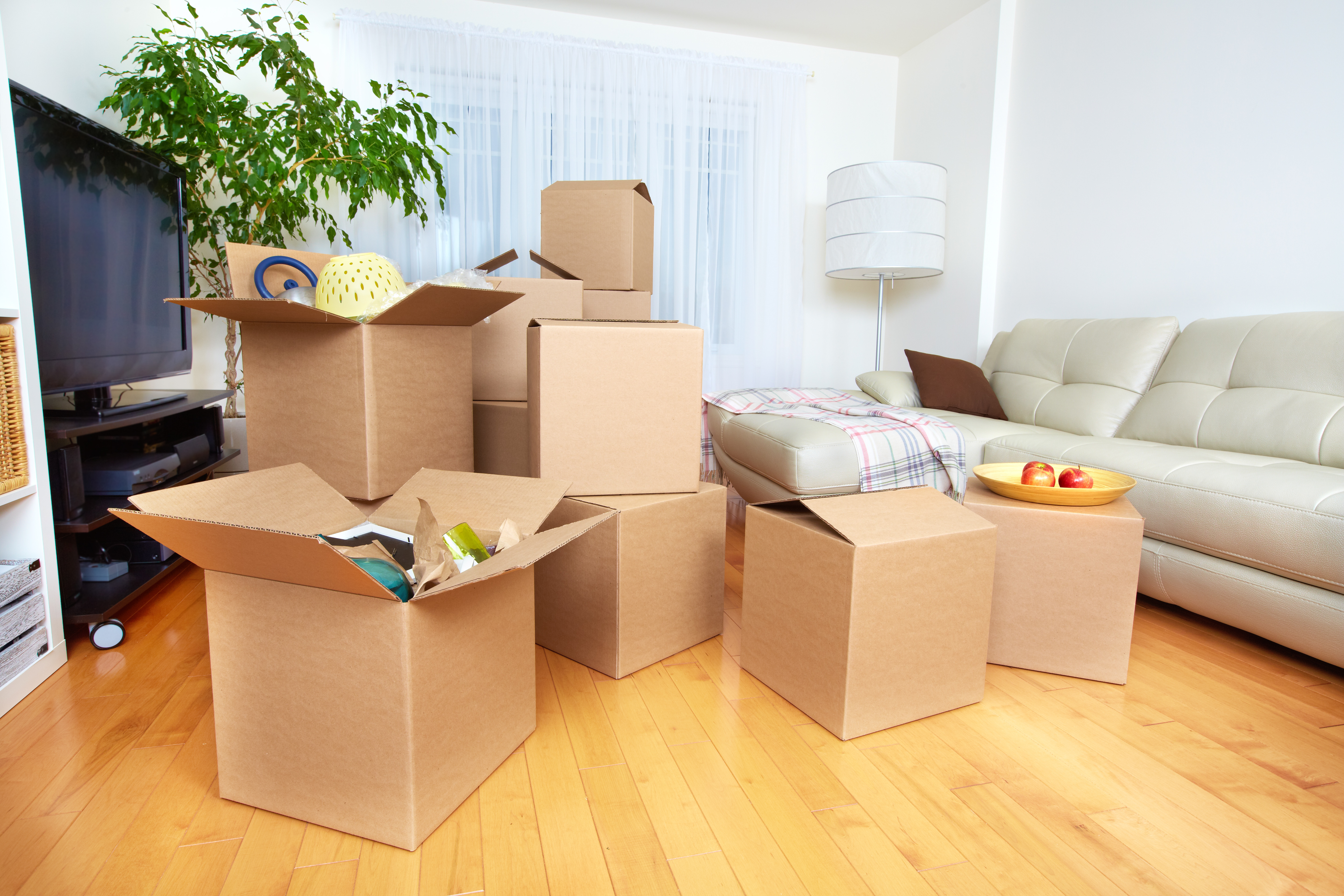 introducing a new service international removals and relocations removals and relocations