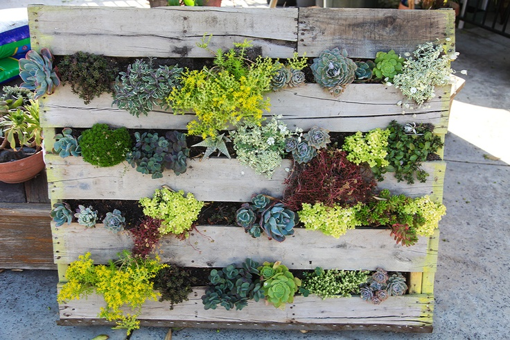 5 perfect ideas to reuse a shipping pallet eurosender for Limited space gardening ideas