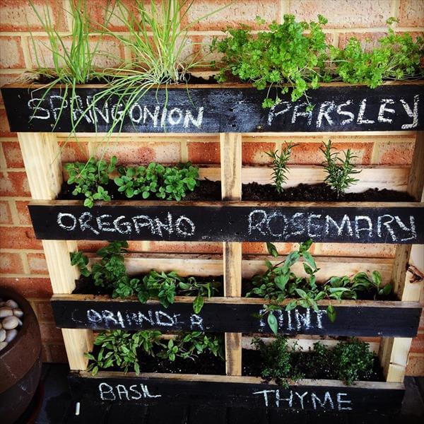 Pallet herb shelf