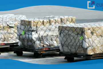 choose between ocean freight and air freight