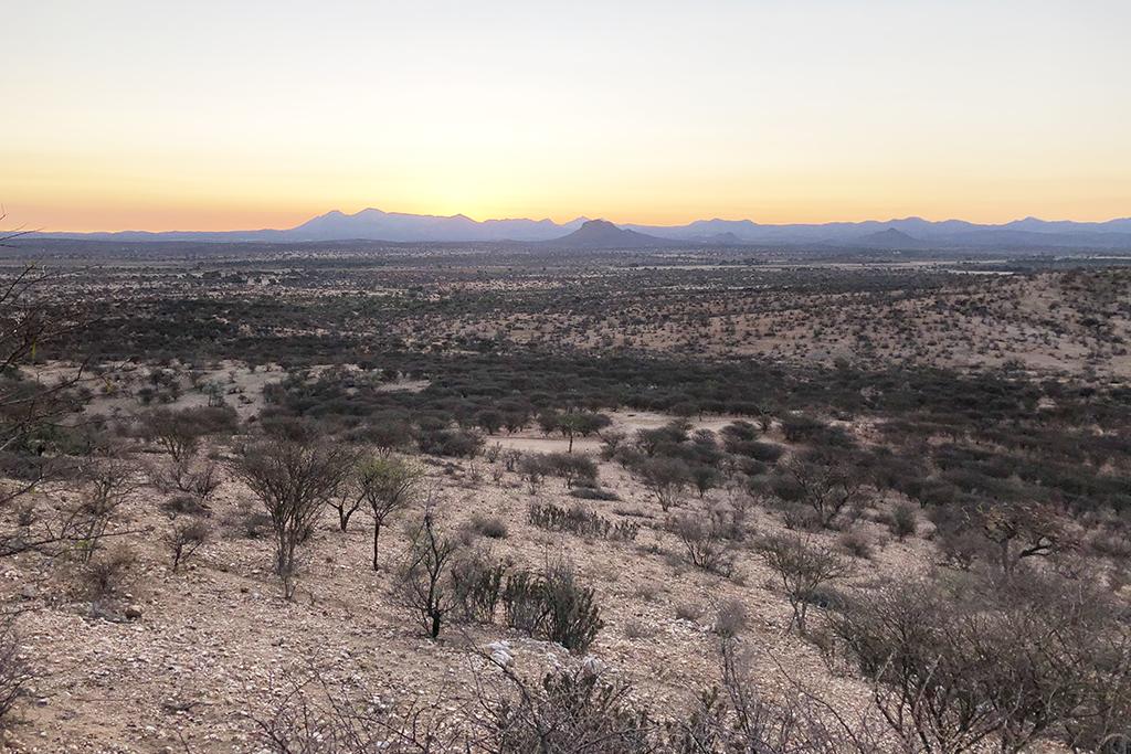 Namibian kuivuus on vienyt kaiken vehreyden kasvustosta.