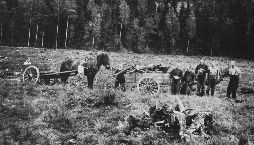 Peltotöiden tekoa Lakistossa, pellolla työmiehiä ja hevosia kärryineen.