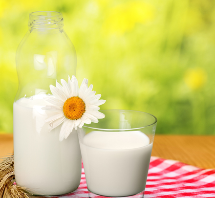 More about Milk