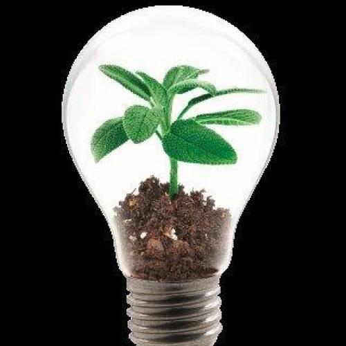 Sustainability 6
