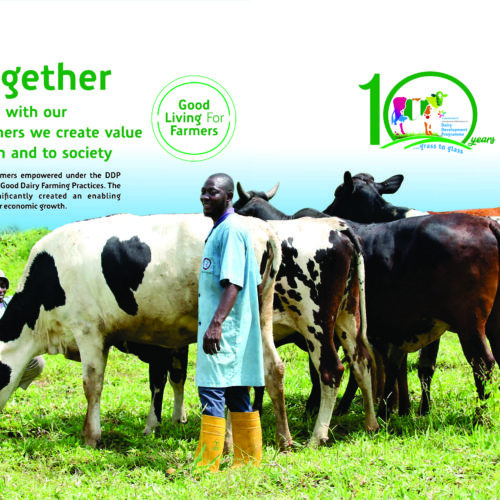 FrieslandCampina WAMCO reports N161.8 billion turnover at 47th AGM, Shares commitment to lead Dairy Development in Nigeria