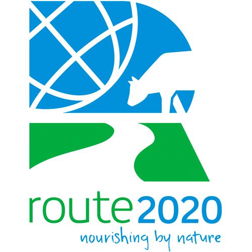 Стратегия route2020: возобновляемое развитие и создание ценности