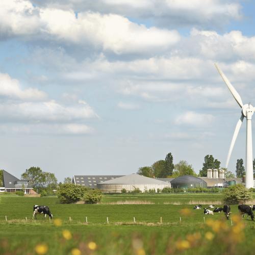 Возобновляемое молочное фермерство