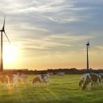 КСО и устойчивость
