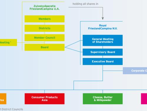 Структура организации FrieslandCampina