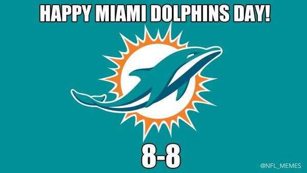 miami dolphins meme