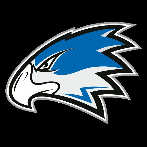 Волжские Коршуны лого