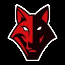 Vilnius Iron Wolves