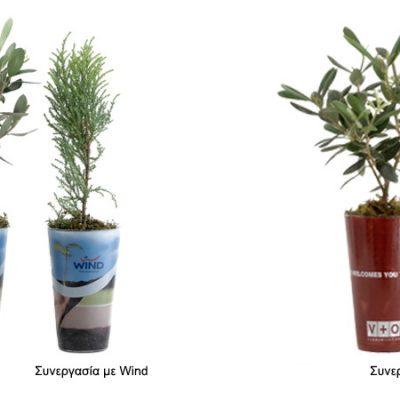 γυάλινο-βάζο-glass-vase-how-to-plan-fleria-corporate-gift-εταιρικά-δώρα-γαστρονόμος-wind-vo