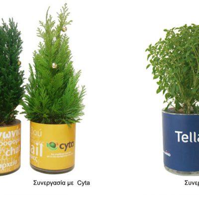γυάλινο-βάζο-glass-vase-how-to-plan-fleria-corporate-gift-εταιρικά-δώρα-cyta-tellas.