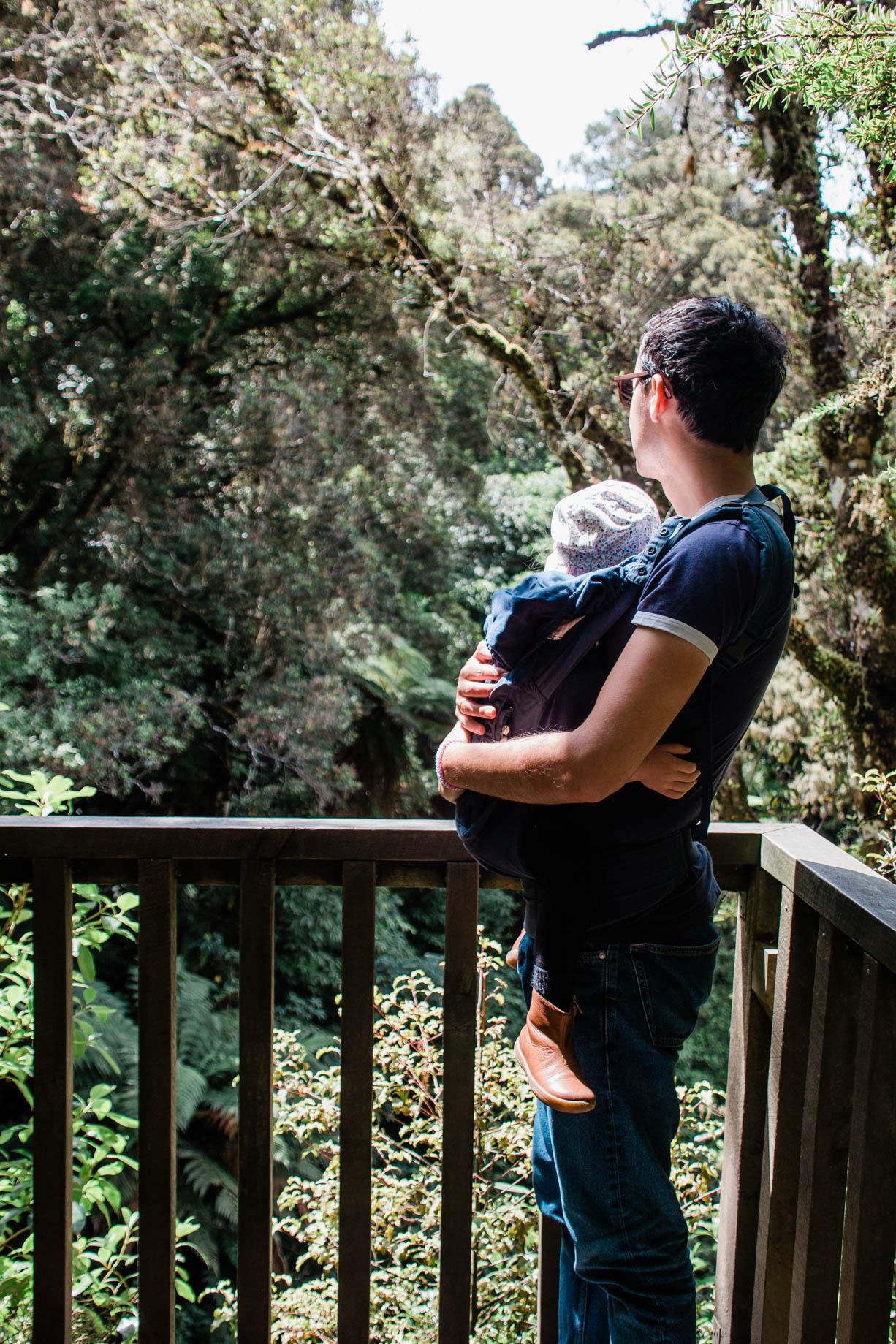 Neuseeland mit Kind, Reisebericht Elternzeit: Dunedin & Catlins