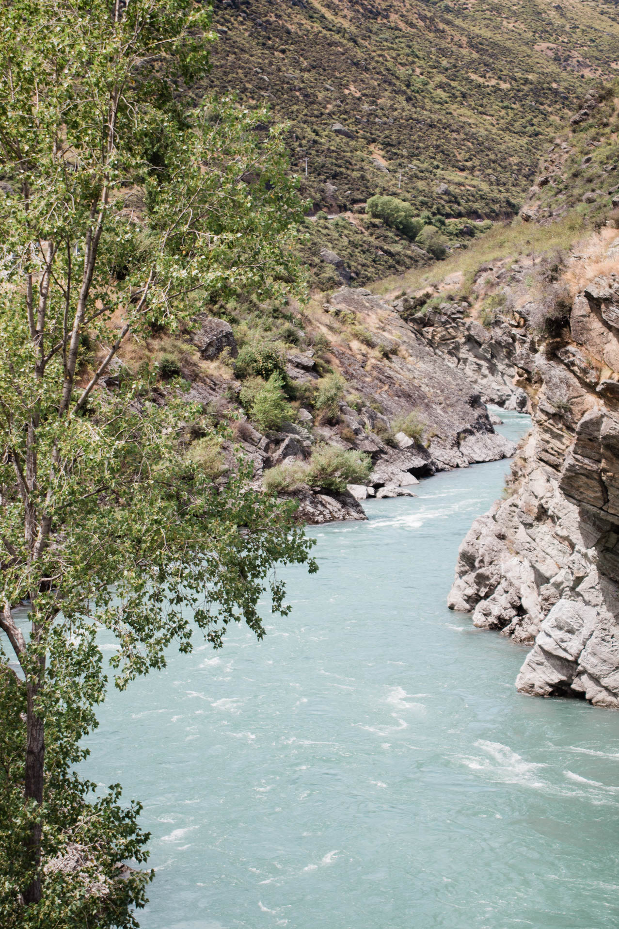 Neuseeland mit Kind, Reisebericht Elternzeit: Wanaka & Queenstown